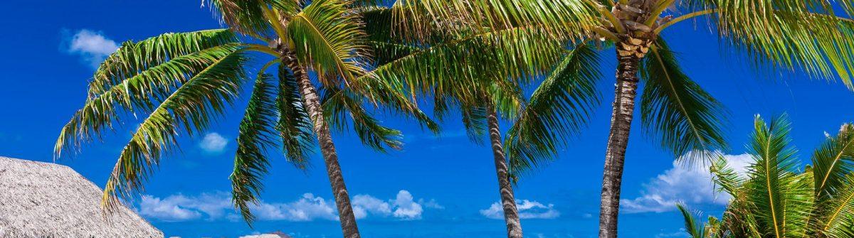 Tropical-Island-Paradise-Bora-Bora-Tahiti-iStock_000062909816_Large-2