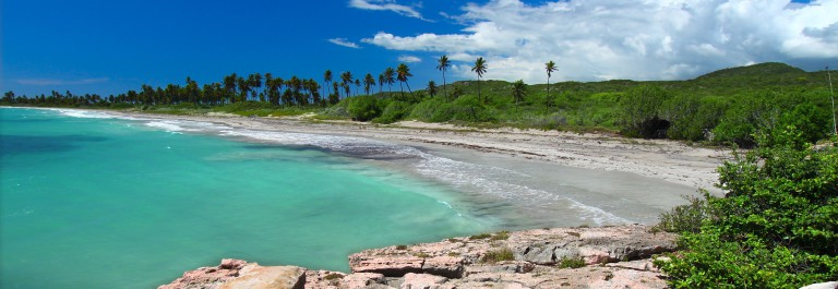 A beautiful day at the beach of Guanica Reserve in Puerto Rico shutterstock_68619133
