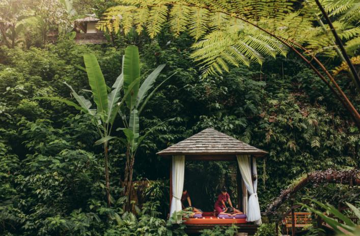 jardines colgantes ubud8