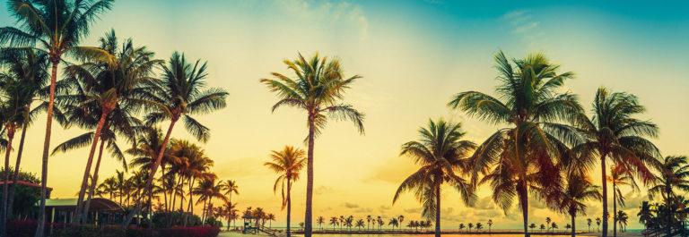 beach miami panorama