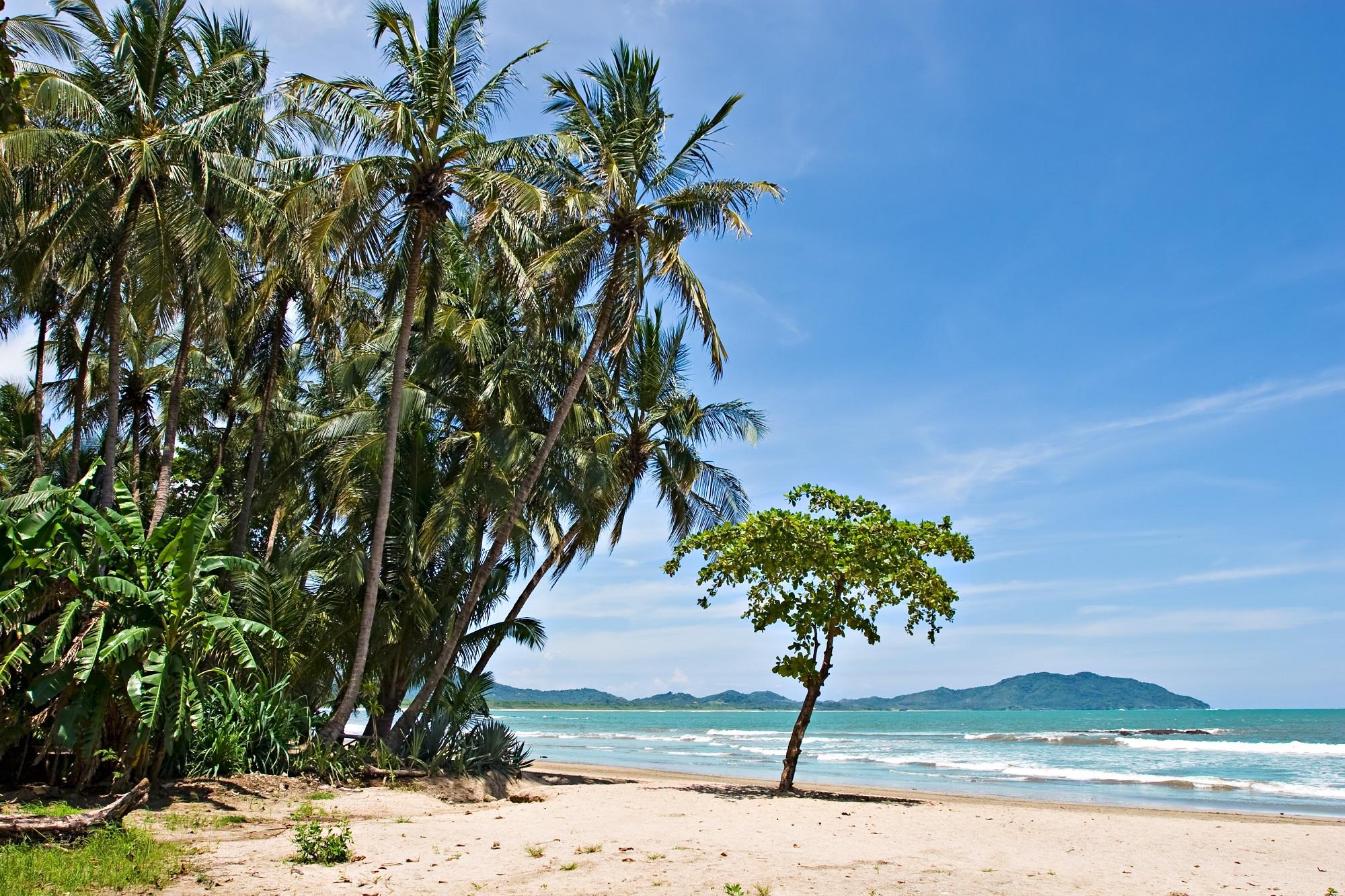 Vacaciones en costa rica con vuelos y hostel incluido para for Vuelos baratos a costa rica