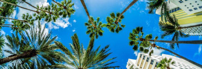 Vacaciones en Miami con apartamentos centricos