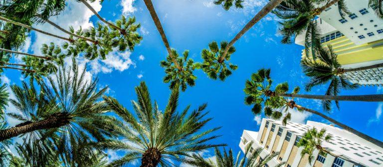 Vacaciones en Miami y Crucero por Las Bahamas en Miami