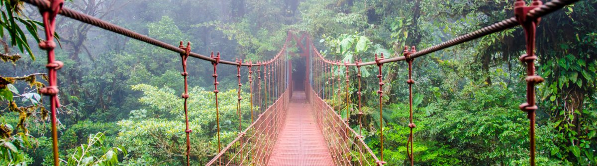 Bridge in Rainforest – Costa Rica – Monteverde_shutterstock_257399221