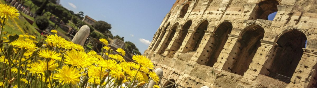 Coliseum and summer in rome shot with smartphone iStock_000023522163_Large