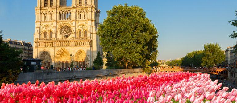 Paris Notre Dame shutterstock_534325174