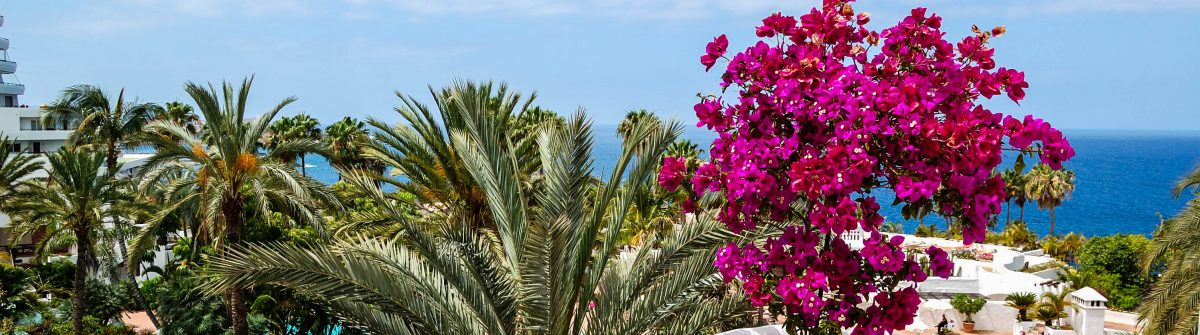 View on the beach of luxury hotel decorated with flowers, Tenerife island, Spain shutterstock_78493555-2
