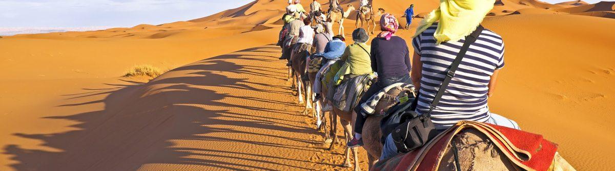 Camel caravan going through the sand dunes in the Sahara Desert, Morocco_shutterstock_172448144