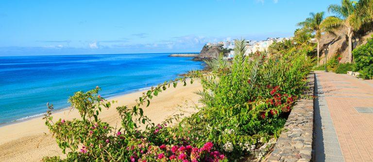 Gran Canaria shutterstock_211219657