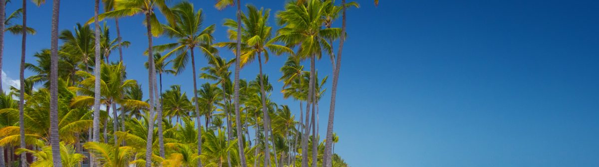 Tropical beach Bavaro at tourist resort in Punta Cana, Dominican Republic shutterstock_391772647