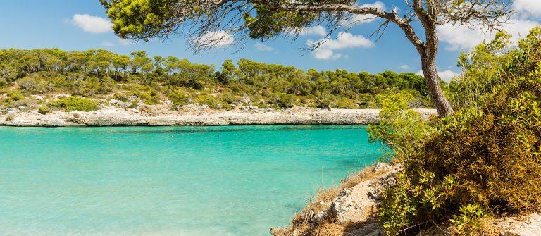 Naturpark Mondrago Mallorca Santanyi shutterstock_550524067