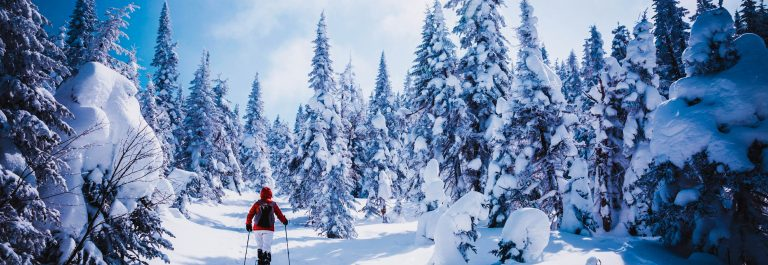 Woman Walking with Snowshoes in Winter Forest Landscape iStock_000073940271_Large-2