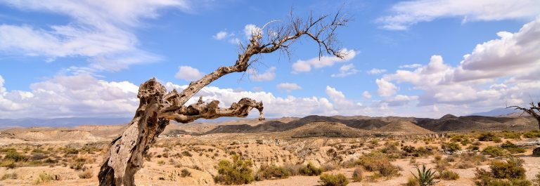 View of the Desert Tabernas in Almeria Province Spain_480255265