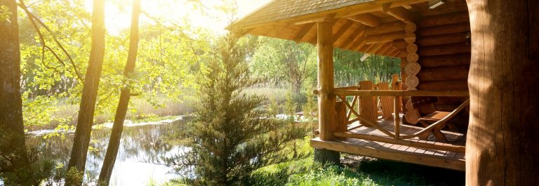 Wooden house and pond house tree _413315389 x2000