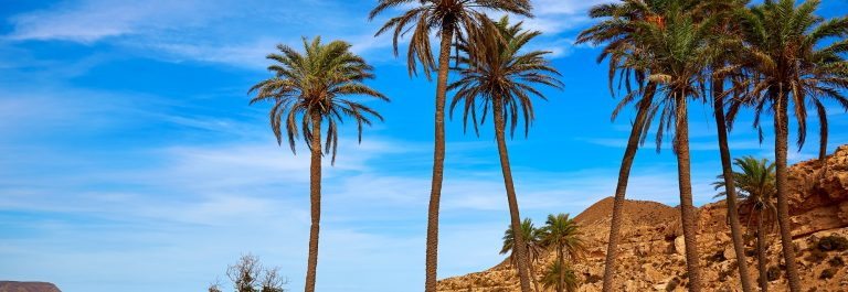 Almeria in Cabo de Gata Playazo Rodalquilar beach at Mediterranean Spain_284703944