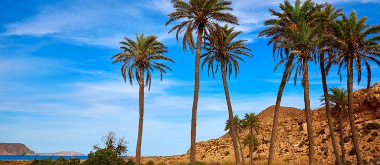 Almeria in Cabo de Gata Playazo Rodalquilar beach at Mediterranean Spain_284703944
