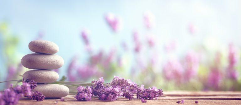 wellness_453366910