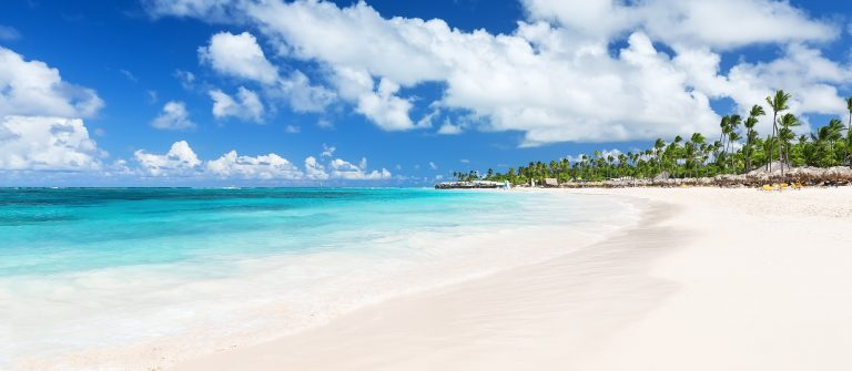 Coconut Palm trees on white sandy Bavaro beach in Punta Cana, Dominican Republic_417927064