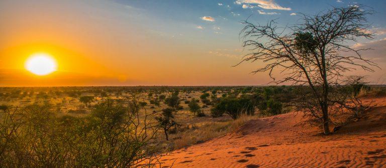 sunrise in Kalahari desert, Namibia
