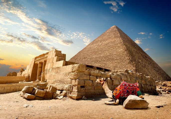Camel rests near ruins of entrance to pyramid_331234733