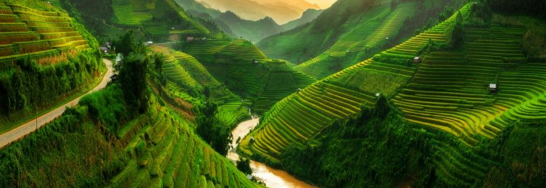 Mu-Cang-Chai-landscape-terraced-rice-field-near-Sapa-north-Vietnam-shutterstock_521129761