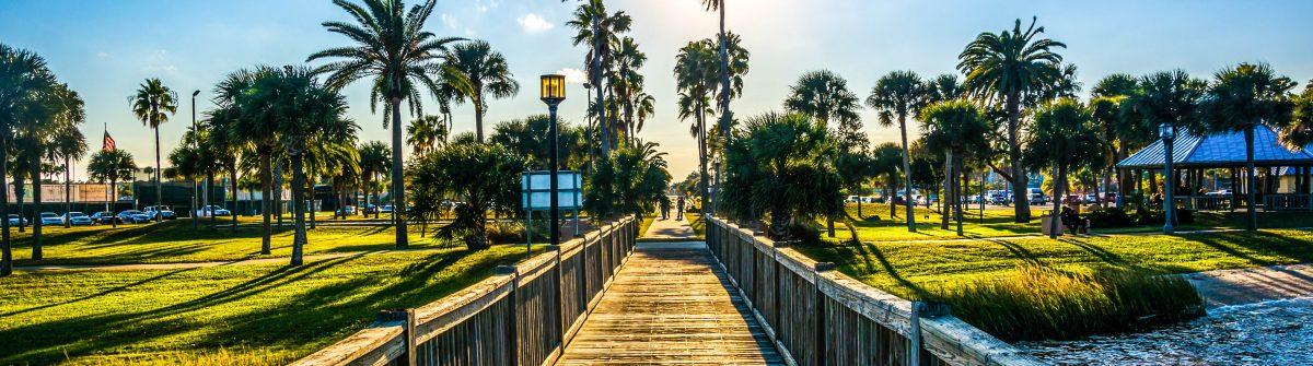 The sun shining through palm trees and a fishing pier in Daytona shutterstock_248697085-2