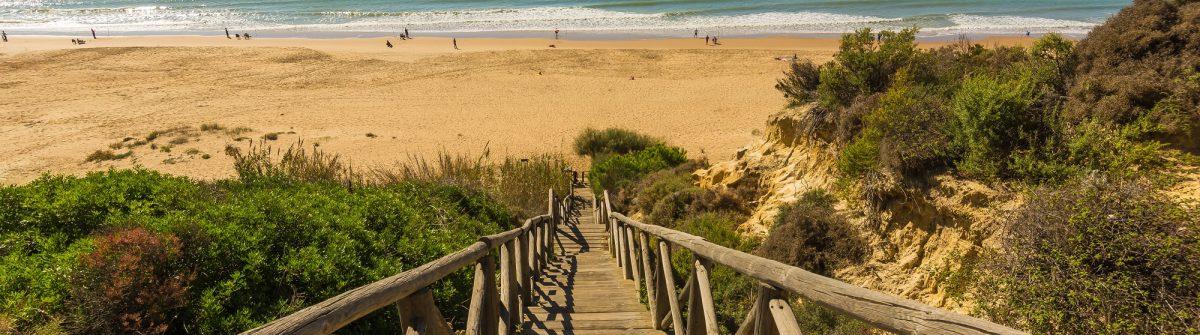 Wooden runway within Mazagon beach, Huelva, Spain_508246123