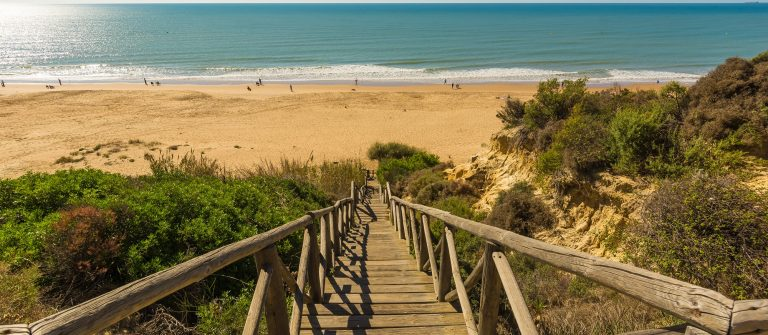 Wooden runway within Mazagon beach, Huelva, Spain_508246123