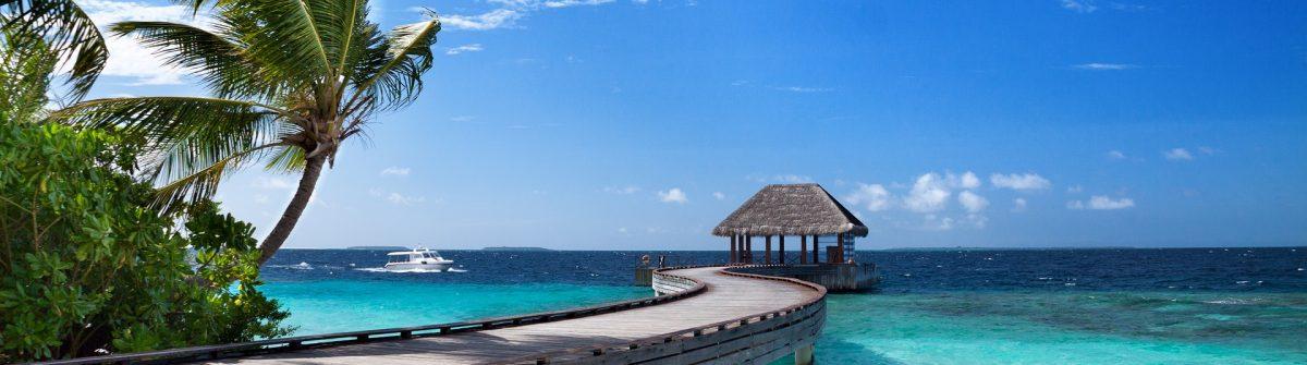 maledives_palmtree_bridge_579597598