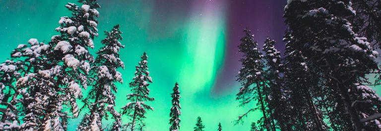 Beautiful-picture-of-massive-multicolored-green-vibrant-Aurora-Borealis-Aurora-Polaris-also-know-as-Northern-Lights-in-the-night-sky-over-winter-Lapland-landscape-Norway-Scandinavia_539168098
