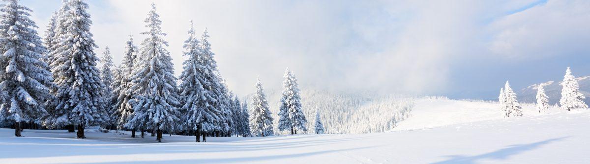 schnee_snow_ski_518551939