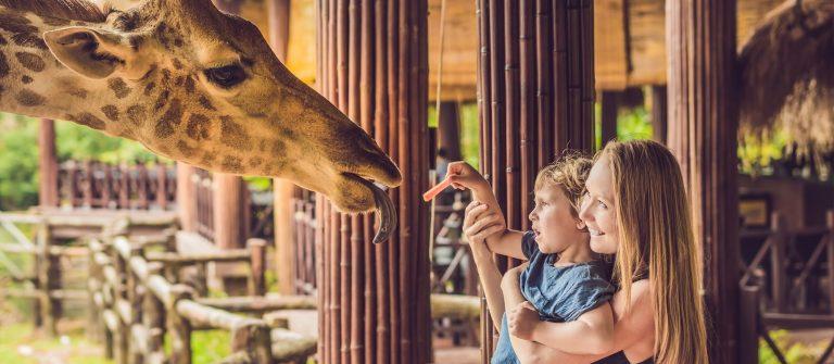 zoo-familie-shutterstock_1025026051