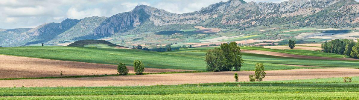 Burgos-landscape-in-Montes-Obarenes-San-Zadornil-Spain_338320232