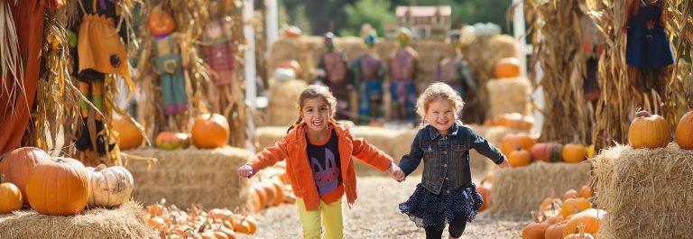 Two-Girls-Running-at-the-Pumpkin-Patch-shutterstock_237849529