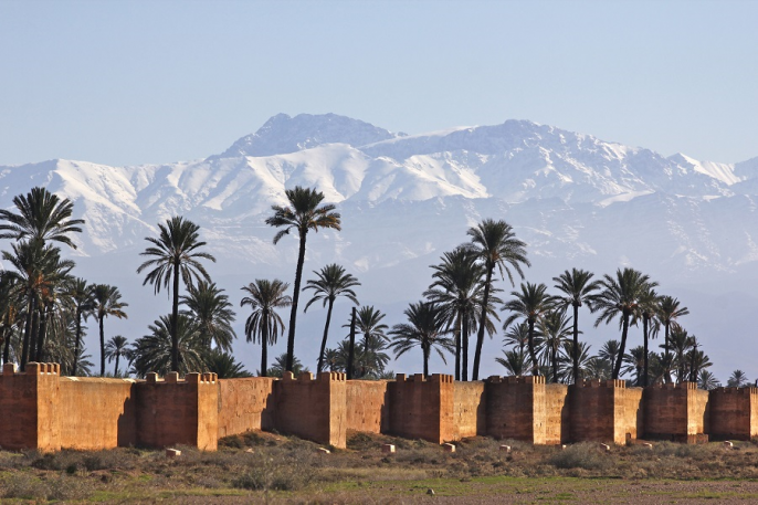 marrakech palms and mountain