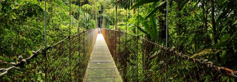 Hanging Bridges in Costa Rica's Arenal National Park